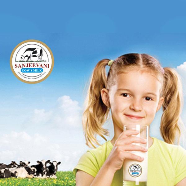 Organic Cow's Milk